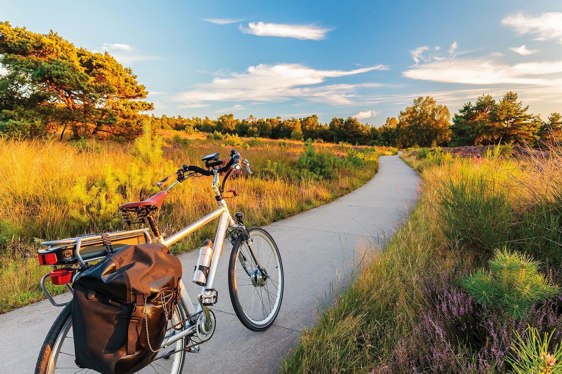 E Fahrrad iStock 603284998 web