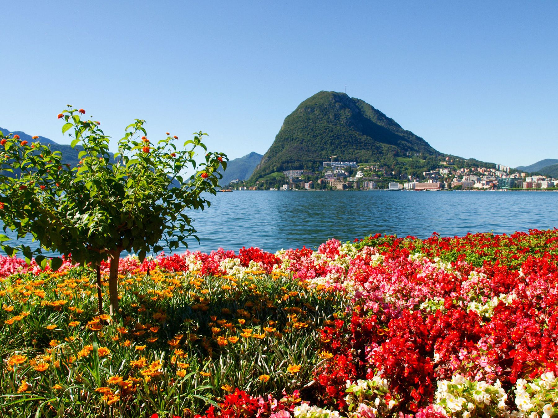 Lugano monte san salvatore web